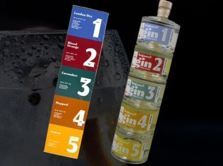 gin tower søgaards bryghus dinnerlust aalborg nytårsmenu gin tonic smagning dinnerclub